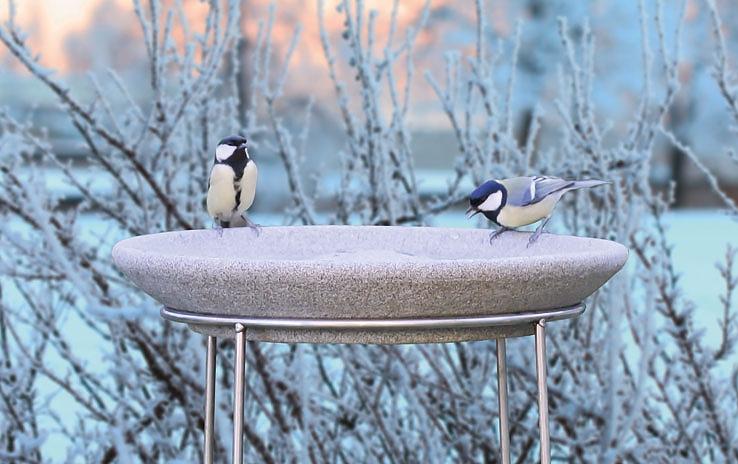 vogeltr nke aus granicium mit edelstahl st nder denk keramik. Black Bedroom Furniture Sets. Home Design Ideas